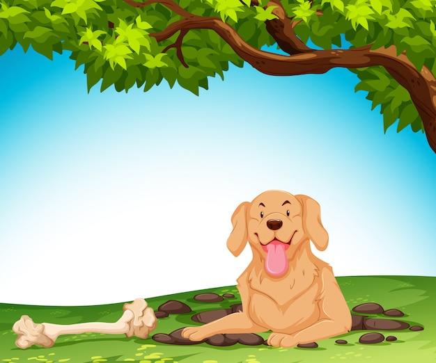 Ein hund gräbt den boden