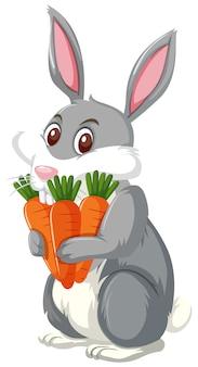 Ein kaninchen, das karotte anhält