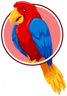 Ein papagei in der kreisschablone