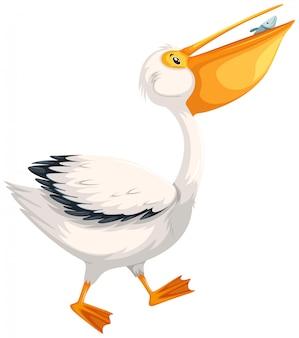 Ein pelikancharakter auf weißem hintergrund