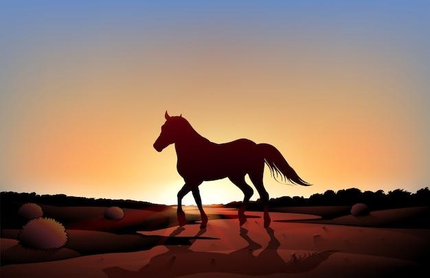 Ein pferd in einer sonnenunterganglandschaft in der wüste