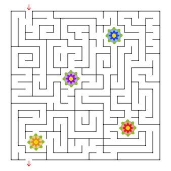 Ein quadratisches labyrinth. sammle alle blumen und finde einen weg aus dem labyrinth