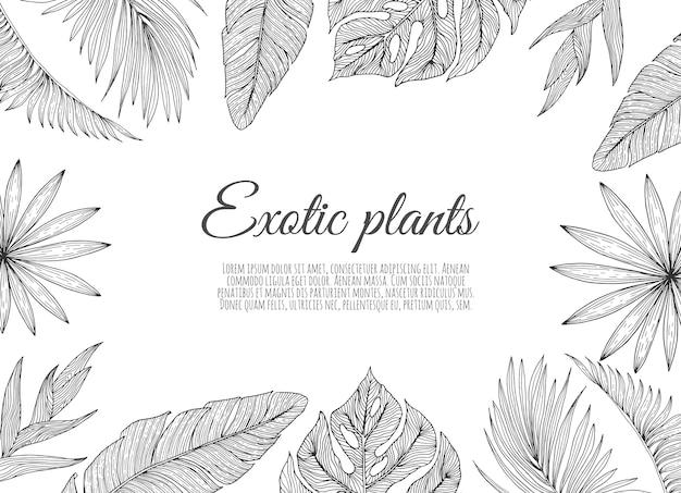 Ein randrahmenentwurf verziert mit den tropischen tropischen palmblättern und den blumen.