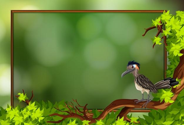 Ein roadrunner-vogel im naturrahmen