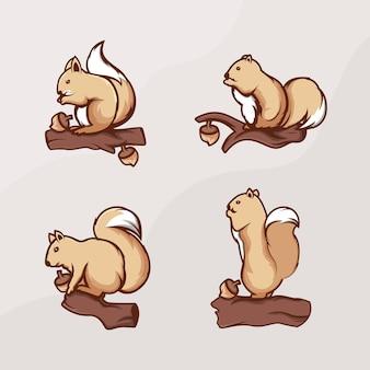 Ein satz eichhörnchen-design-logo mit eicheln in der nähe