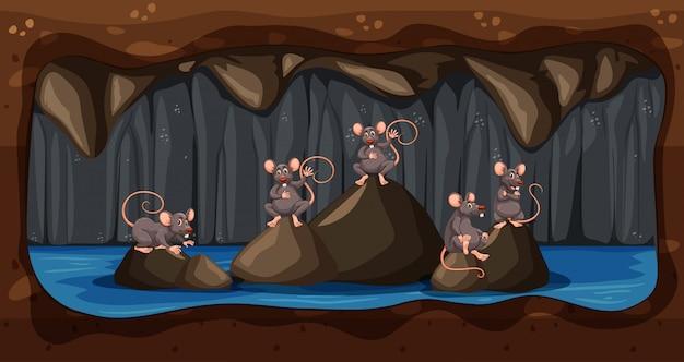 Ein schmutziges untertage-ratten-haus