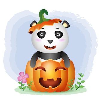 Ein süßer panda im halloween-kürbis
