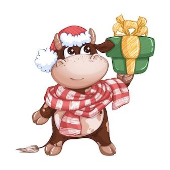 Ein süßes kalb in einem roten hut und einem gestreiften schal hält eine geschenkbox. festlicher wintercharakter. symbol des jahres.