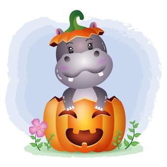 Ein süßes nilpferd im halloween-kürbis