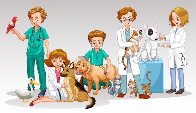Ein tierarzt-doktor team auf weißem hintergrund