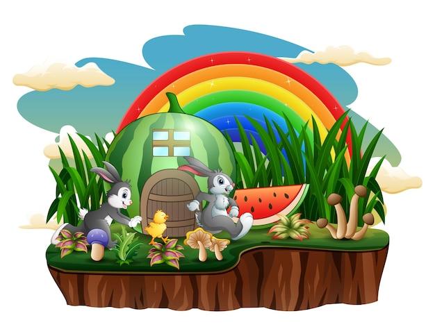 Ein wassermelonenhaus mit kaninchen und küken auf der insel