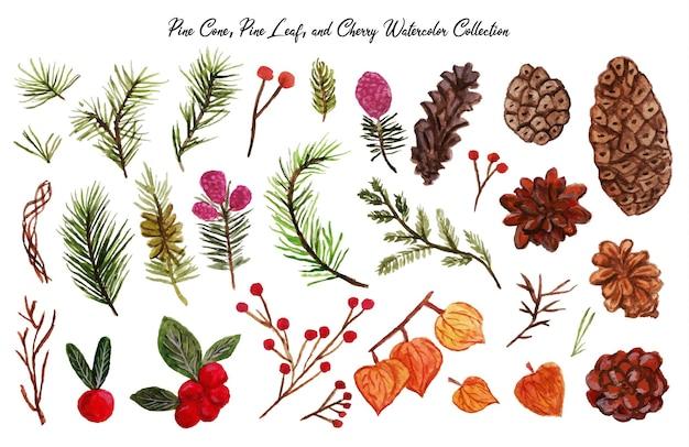 Ein wunderschöner handgezeichneter kiefernblatt-kiefernzapfen und kirschaquarell