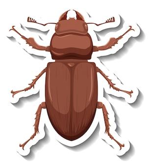 Eine aufklebervorlage mit draufsicht auf einen isolierten käfer
