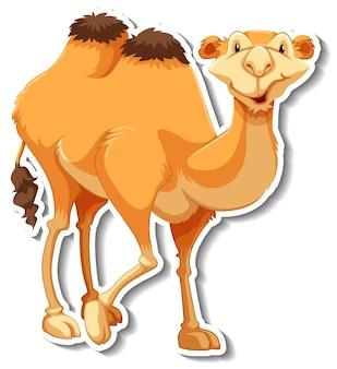 Eine aufklebervorlage von kamel-cartoon-figur