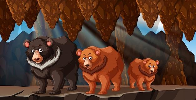 Eine bierfamilie lebt in der höhle