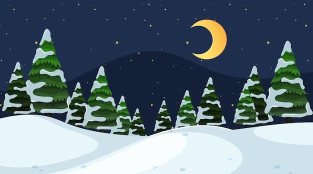Eine einfache winterszene bei nacht