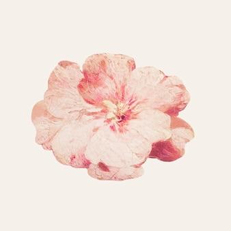 Eine einzelne blüte blumenillustration
