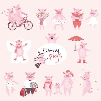 Eine große reihe von lustigen und niedlichen schweinefiguren im cartoon-stil