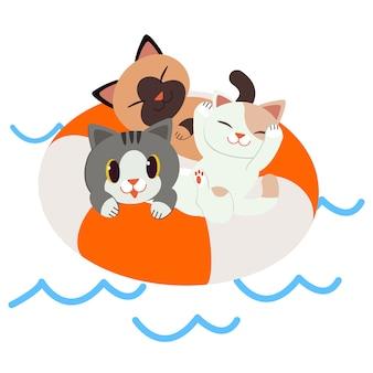 Eine gruppe der katze sitzend auf dem rettungsring.