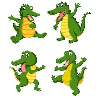 Eine gruppe von krokodil