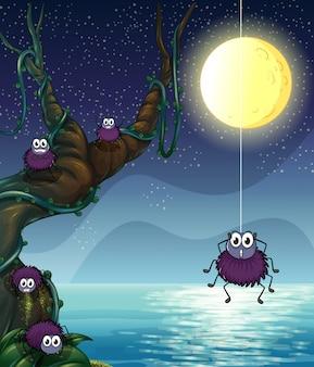 Eine gruppe von spinnen