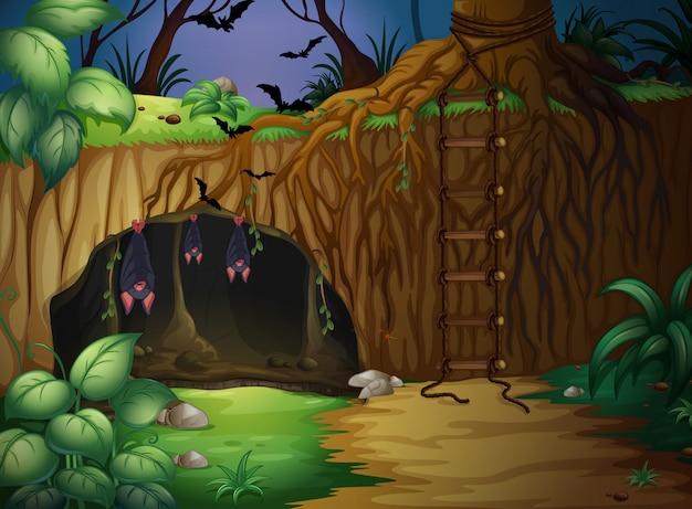 Eine höhle und fledermäuse
