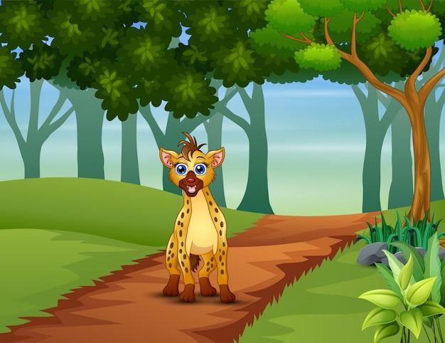 Eine hyäne, die im wald geht