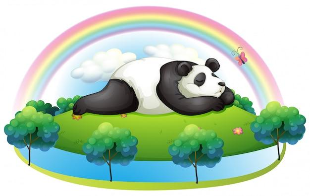 Eine insel mit einem großen pandaschlafen