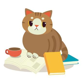 Eine katze mit einem buch