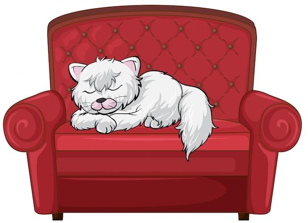 Eine katze schläft fest auf dem stuhl