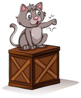 Eine katze über der box