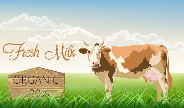 Eine kuh mit braunen flecken, die die kamera mit einer wiese im hintergrund betrachten. bio-frischmilch.