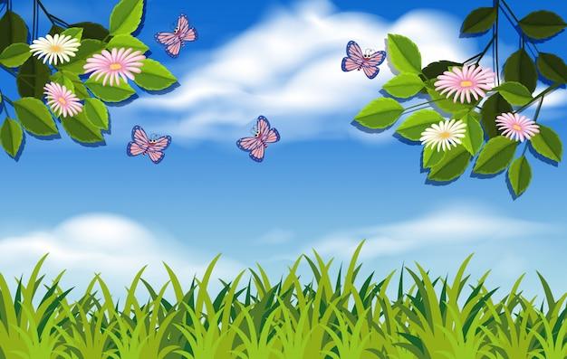 Eine natur- und pflanzenlandschaft