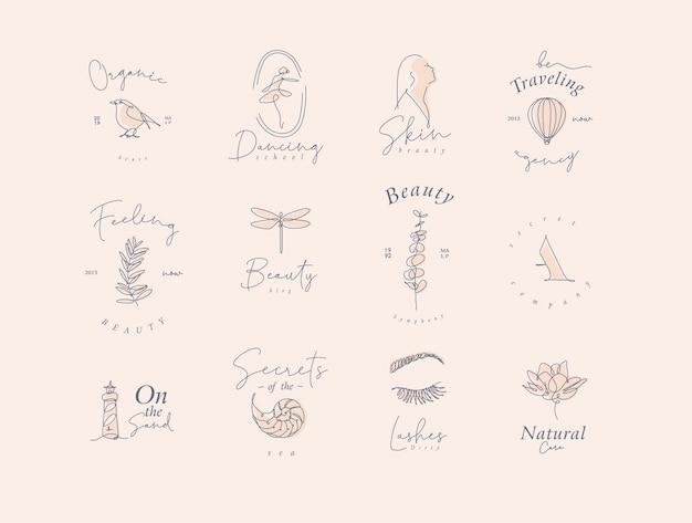 Eine reihe moderner grafikdesignelemente mit schriftzügen im minimalismus-stil, die beige gedämpfte töne zeichnen.