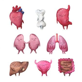 Eine reihe schmerzhafter innerer organe: herz, knochen, magen, nieren, lunge, leber, blase, darm.