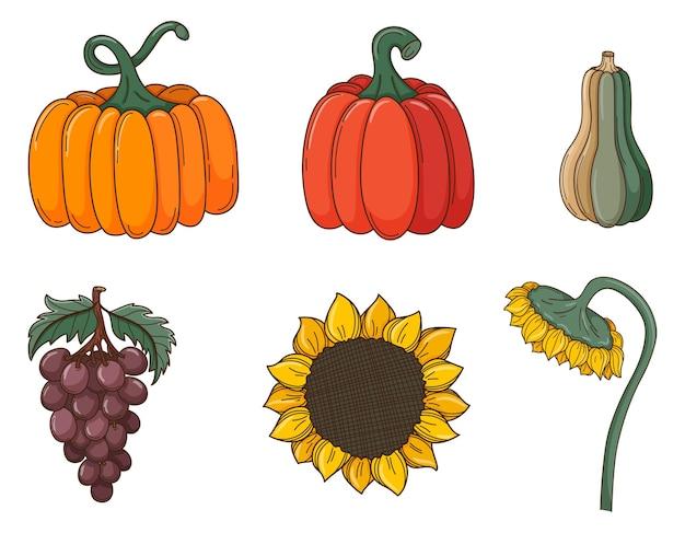 Eine reihe von farbigen kritzeleien. verschiedene kürbisse, sonnenblumen, trauben, pflanzen. herbstdekoelemente