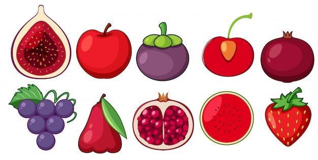 Eine reihe von frischen früchten
