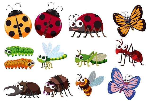Eine reihe von insekten