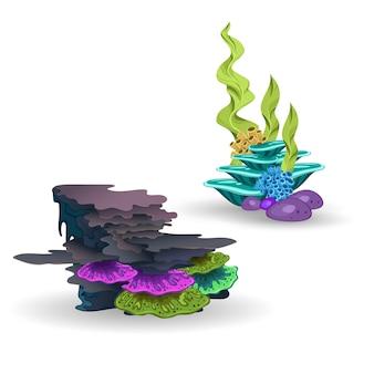 Eine reihe von korallen und algen