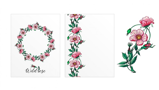Eine reihe von postkarten mit rosenblüten. pinke blumen. rose.