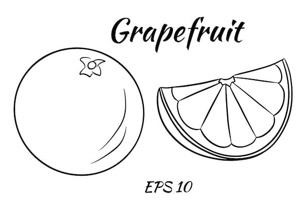 Eine reihe von saftigen grapefruits.