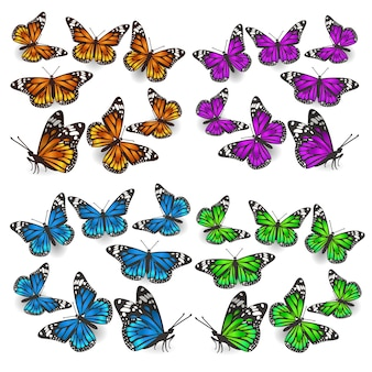 Eine reihe von schmetterlingen in verschiedenen winkeln, verschiedenen farben