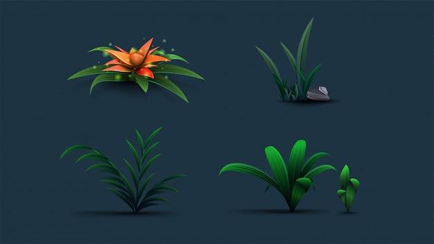 Eine sammlung exotischer blumen und sträucher für ihre kreativität. isolierte tropische pflanzen im karikaturstil. dreidimensionale pflanzenikonen