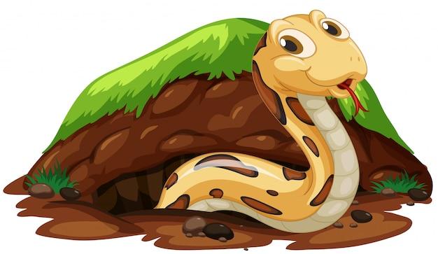 Eine schlange, die im loch lebt