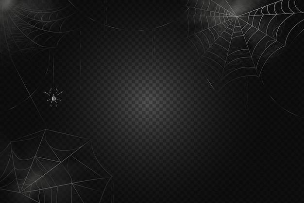 Eine schwarze spinne hängt an einem netz. beängstigendes spinnennetz des halloween-symbols. realistische silhouette.