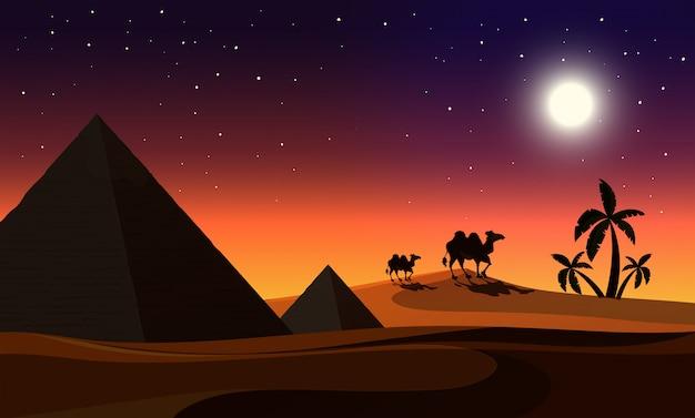Eine wüste in der nacht