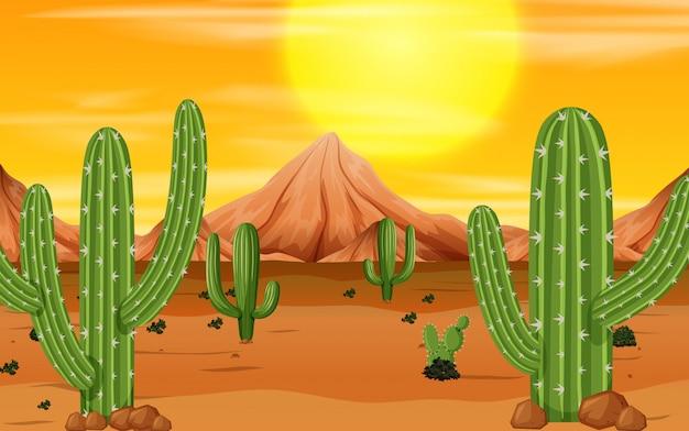 Eine wüstensonnenuntergangszene