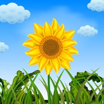 Eine wunderbare aussicht mit der großen sonnenblume