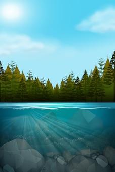 Eine wunderschöne naturlandschaft