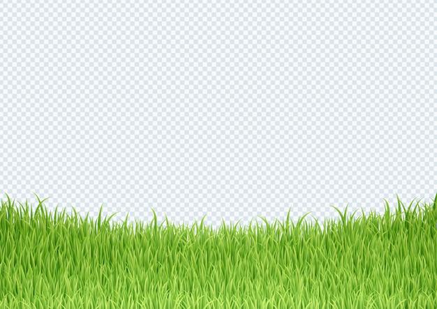 Einfacher grüner grasunterkantenrandhintergrund